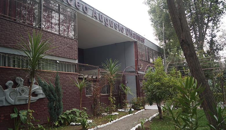 Liceo Augusto D'Halmar